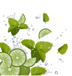 Fresh mojito ingredients background vector