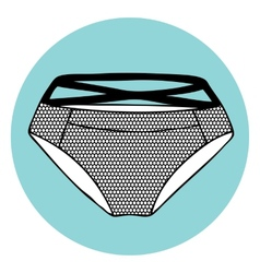 Lacy sexy panty vector image