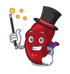 magician spleen mascot cartoon style vector image