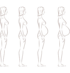 Pregnant woman figure vector