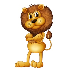 An angry lion vector image vector image