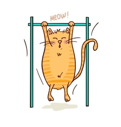 cat and sport vector image vector image