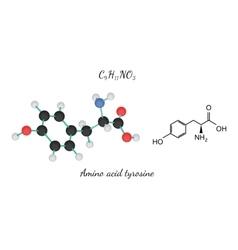 C9H11NO3 amino acid Tyrosine molecule vector