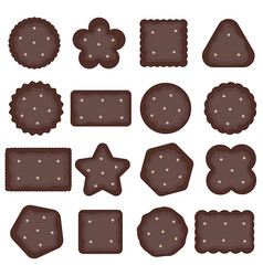 Cookies chocolate with hazelnut sweet vector