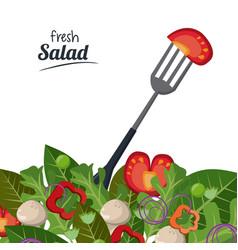 Fresh salad tomato leaves fork organic food vector