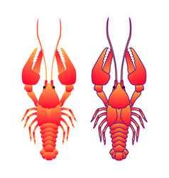 Red crayfish isoleted on white flat gradient sea vector