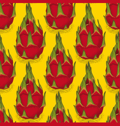 seamless pattern with dragon fruit or pitaya vector image