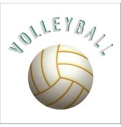 Volleyball ball icon vector