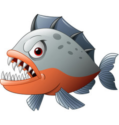 Angry piranha cartoon vector