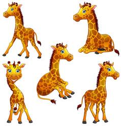 giraffe cartoon set collection vector image