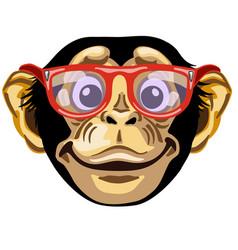 Head smiling chimpanzee vector