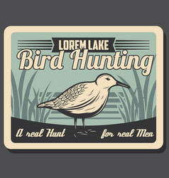 Woodcock bird hunting retro vector