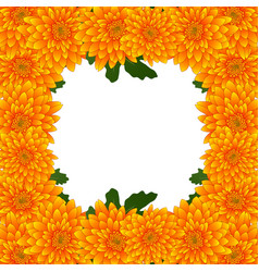 Yellow mum chrysanthemum flower border vector