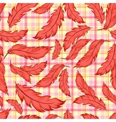 Seamless pattern with feathers on plaid vector image vector image