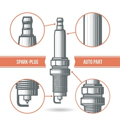 Spark plug auto part vector image
