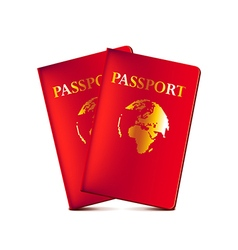 Two passports isolated on white vector image vector image