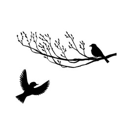 birds at tree silhouettes vector image vector image