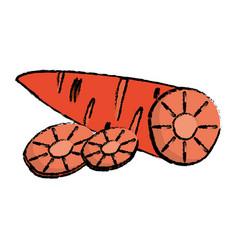 carrot food diet healthy vector image vector image