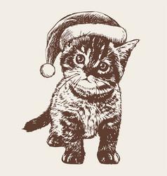 little cat kitten with christmas santa hat vector image vector image