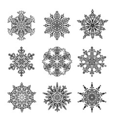 snowflakes and mandala collection vector image vector image