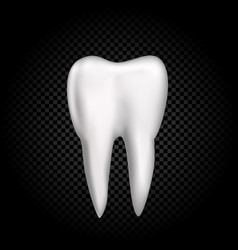 tooth on dark transparent background vector image vector image