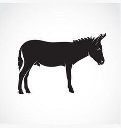 A donkey on white background wild animals vector