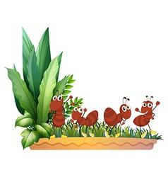 Four ants vector