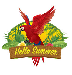 hello summer red macaw vector image