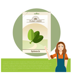 pack of spinach seeds icon vector image vector image