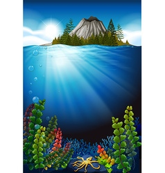 Scene with plants under the sea vector