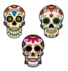 set hand drawn mexican sugar skull isolated on vector image