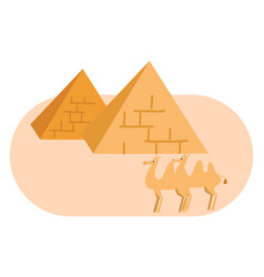 two pyramides and two camels on white background vector image