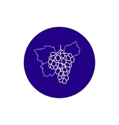 Icon Grapes in the Contours vector image