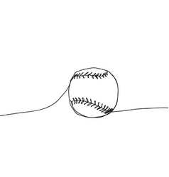 baseball ball on a white vector image