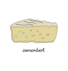camembert on white background vector image