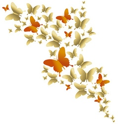 Cute gold colorful butterfly spring vector