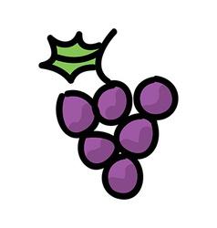 Grape vector