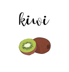 kiwi fruit color with calligraphic inscription vector image