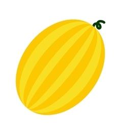 Melon flat icon vector