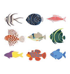 set exotic tropical marine aquarium colorful vector image
