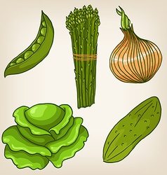 Set of cute hand drawn vegetables vector image