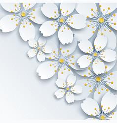 background with white sakura flower vector image vector image