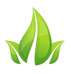shiny nature leafs symbol green color vector image vector image