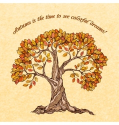 Autumn tree poster vector