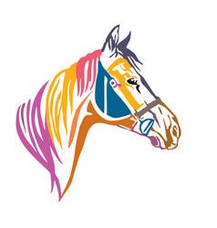 Colorful decorative portrait of horse in profile vector