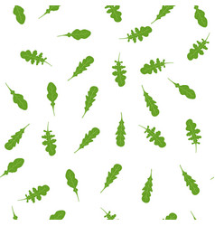pattern with arugula vector image
