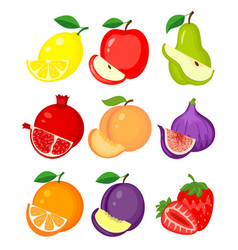 set of different fruits lemon apple pear vector image