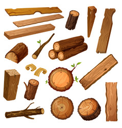 wooden chips and bark timber and stum wood vector image