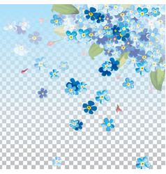 background with spring blue flower blue vector image
