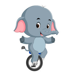cute elephant riding a unicycle vector image